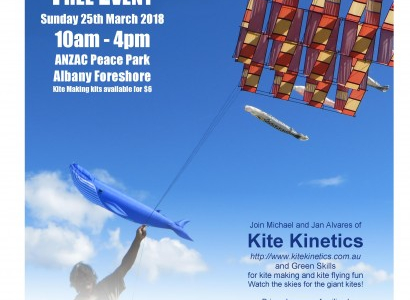 Flyer for Albany Kite Fiesta