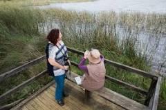 World Wetlands Day birdwatching