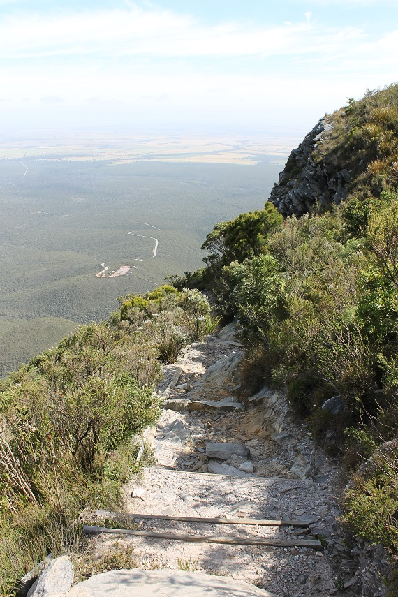 Trail in Stirling Ranges